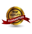 Top quality label sign vector