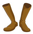 A pair of a fashionable brown boots vector