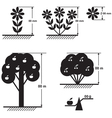 Flower tree scheme vector