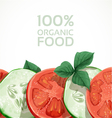 Banner with fresh vegetables tomatoes and cucumber vector