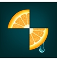 Flowing down drop on an orange segments background vector