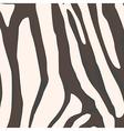 Zebra background vector