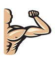 Muscle10 resize vector