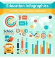 Education apple infographic vector