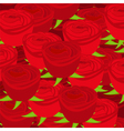 Wallpaper pattern with of red roses vector