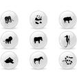 Web buttons animal icons 3 vector