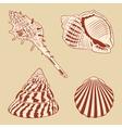 Vintage shells set eps10 vector