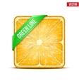 Square slice of orange green line vector
