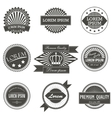 Collection of premium quality labels with retro vector