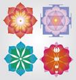 Floral mandalas set vector