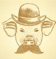 Hat pig mustache vector