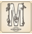 Calligraphic font letter m vector