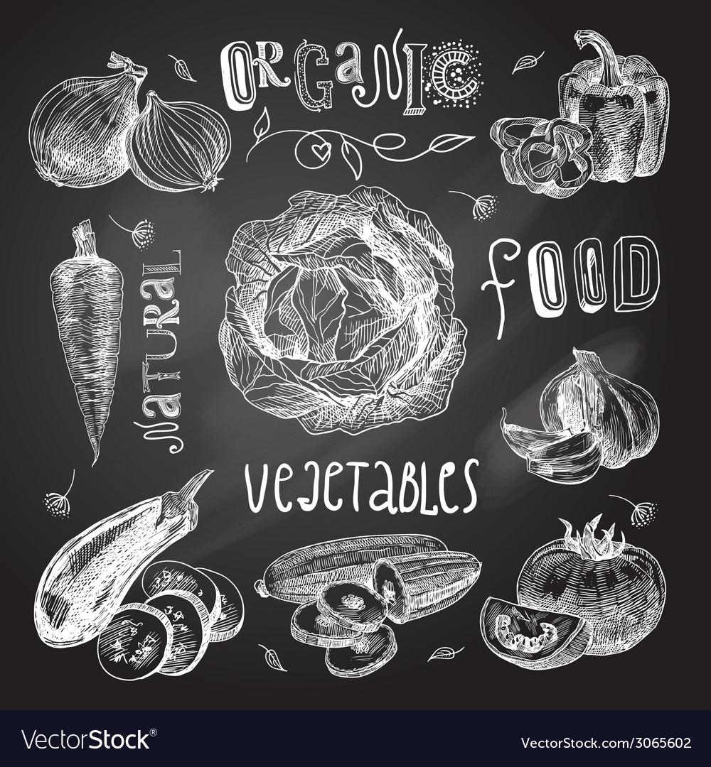 Vegetables sketch set chalkboard vector | Price: 1 Credit (USD $1)