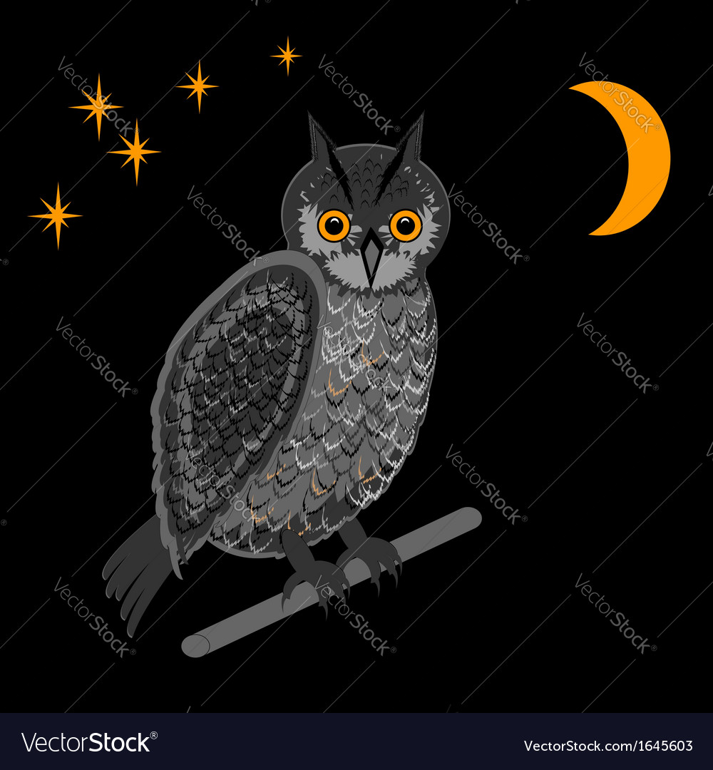 An owl in the nighttime vector | Price: 1 Credit (USD $1)