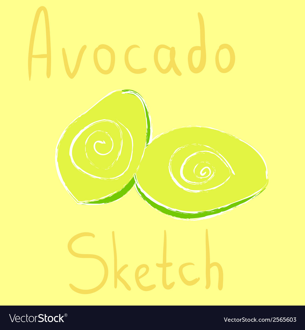 Avocado sketch had drawn with chalk vector | Price: 1 Credit (USD $1)