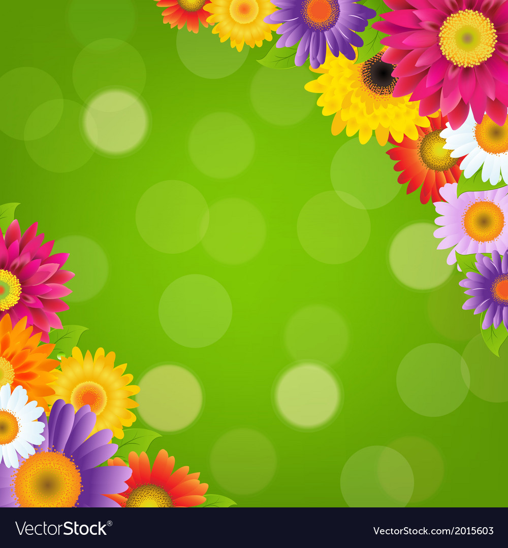 Colorful gerbers flowers border with green bokeh vector | Price: 1 Credit (USD $1)