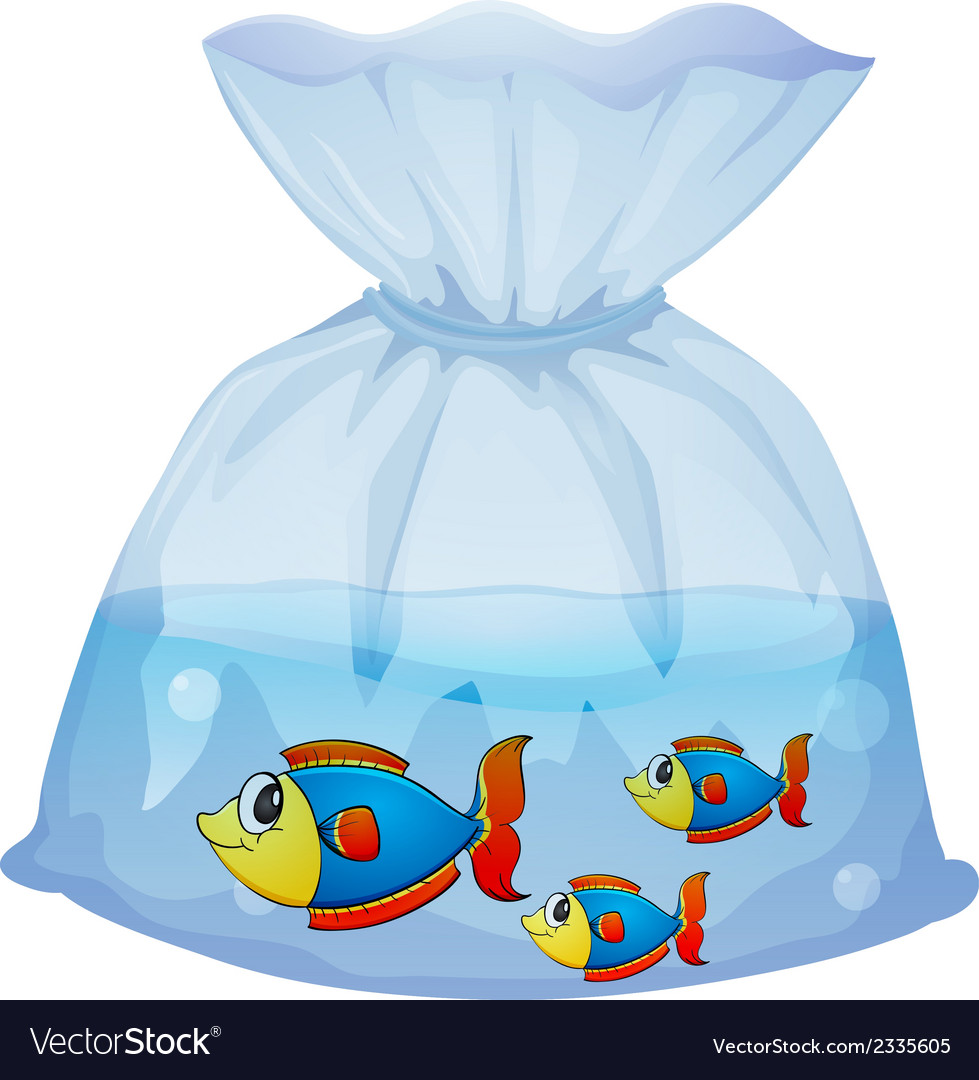 A plastic pouch with three fishes vector | Price: 1 Credit (USD $1)