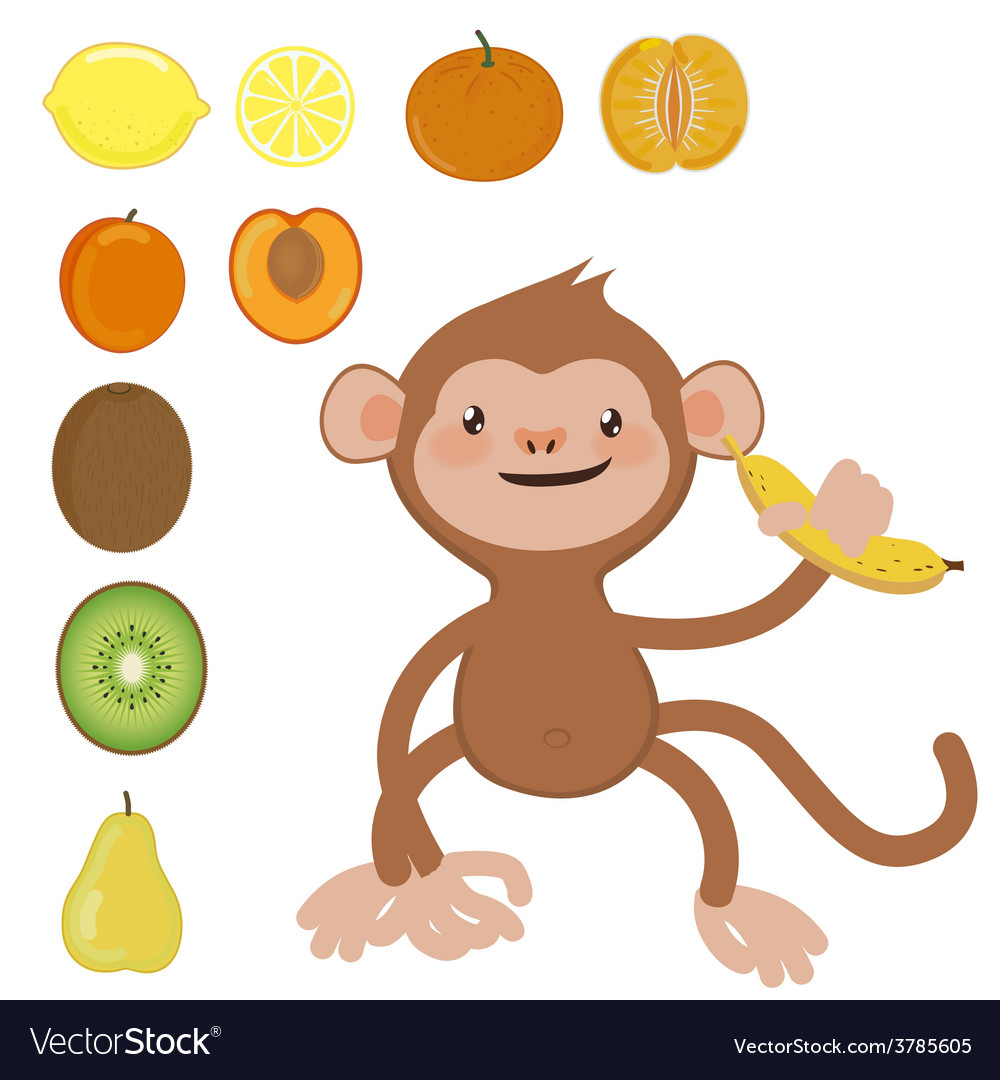 Monkey with banana and fruit set vector | Price: 1 Credit (USD $1)