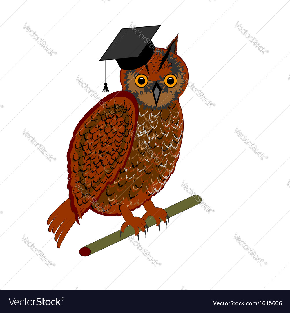 An owl wearing a graduation cap vector | Price: 1 Credit (USD $1)