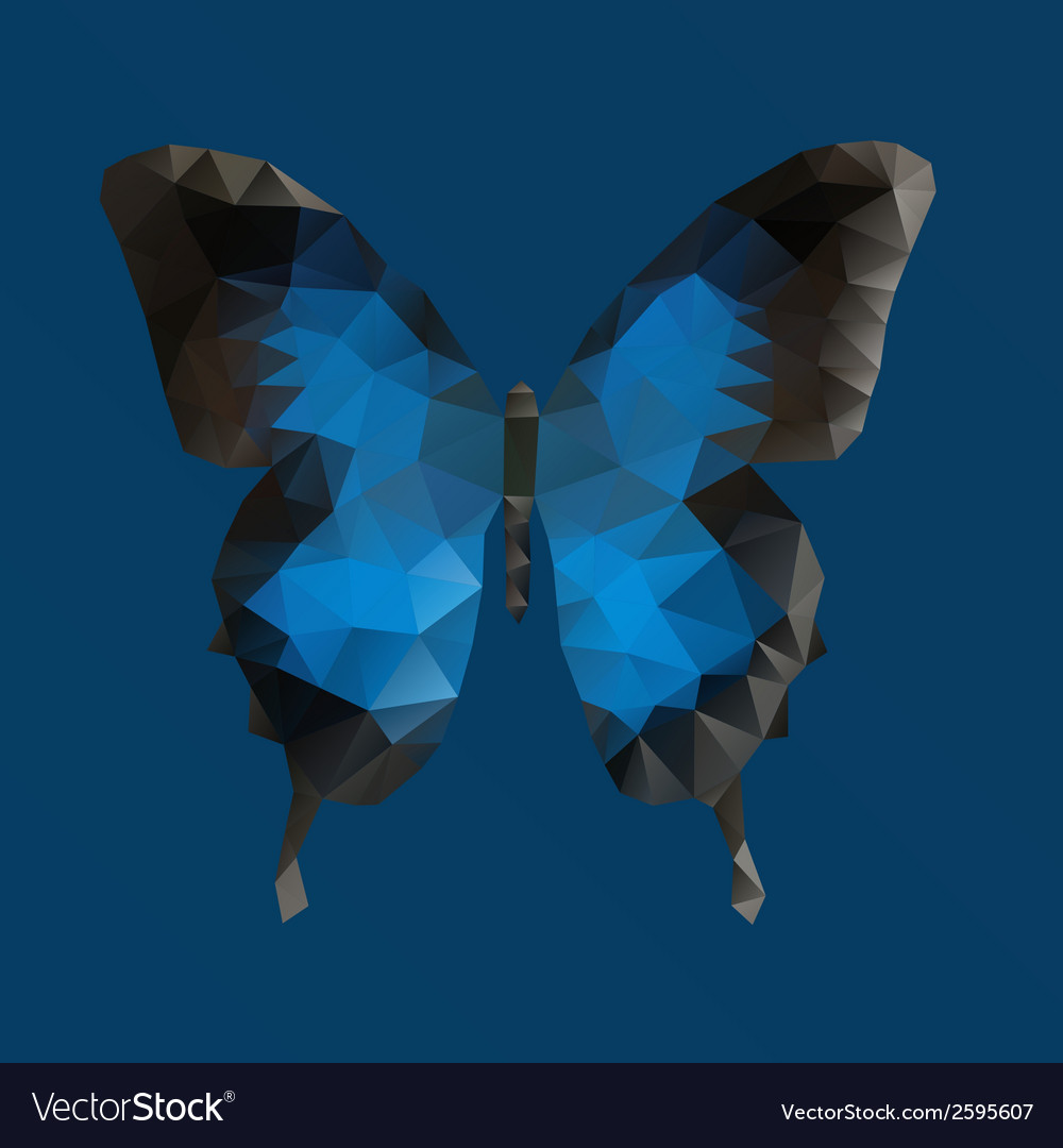 Dark blue butterfly in polygonal technique vector | Price: 1 Credit (USD $1)