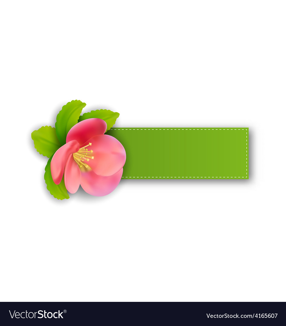 Special spring offer sticker with flower isolated vector | Price: 1 Credit (USD $1)