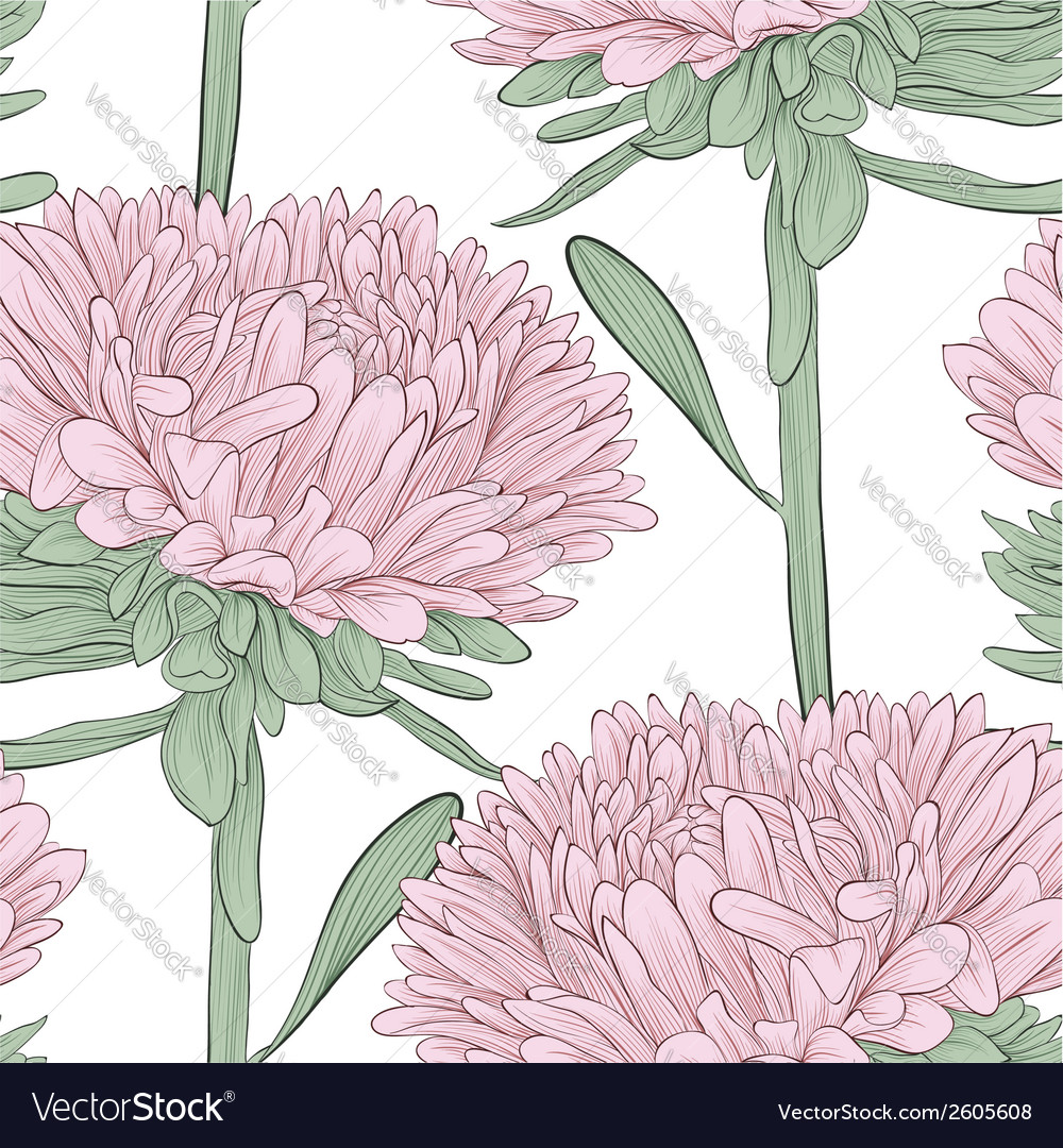 Seamless background with pink flowers aster vector | Price: 1 Credit (USD $1)