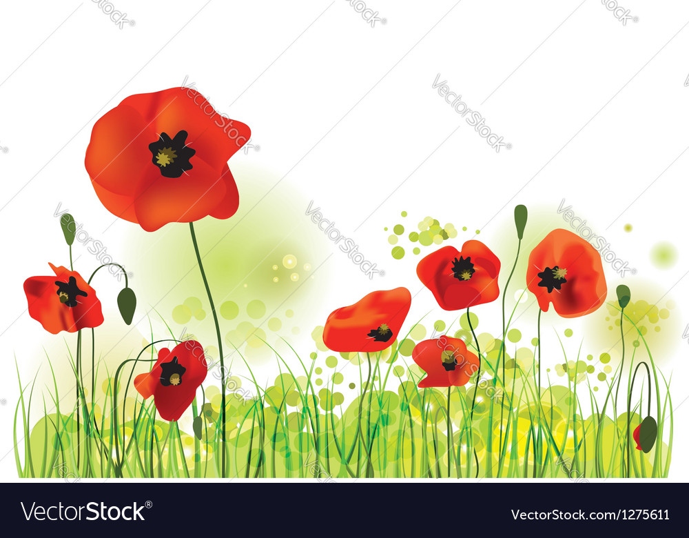 Red poppies field summer landscape vector | Price: 1 Credit (USD $1)