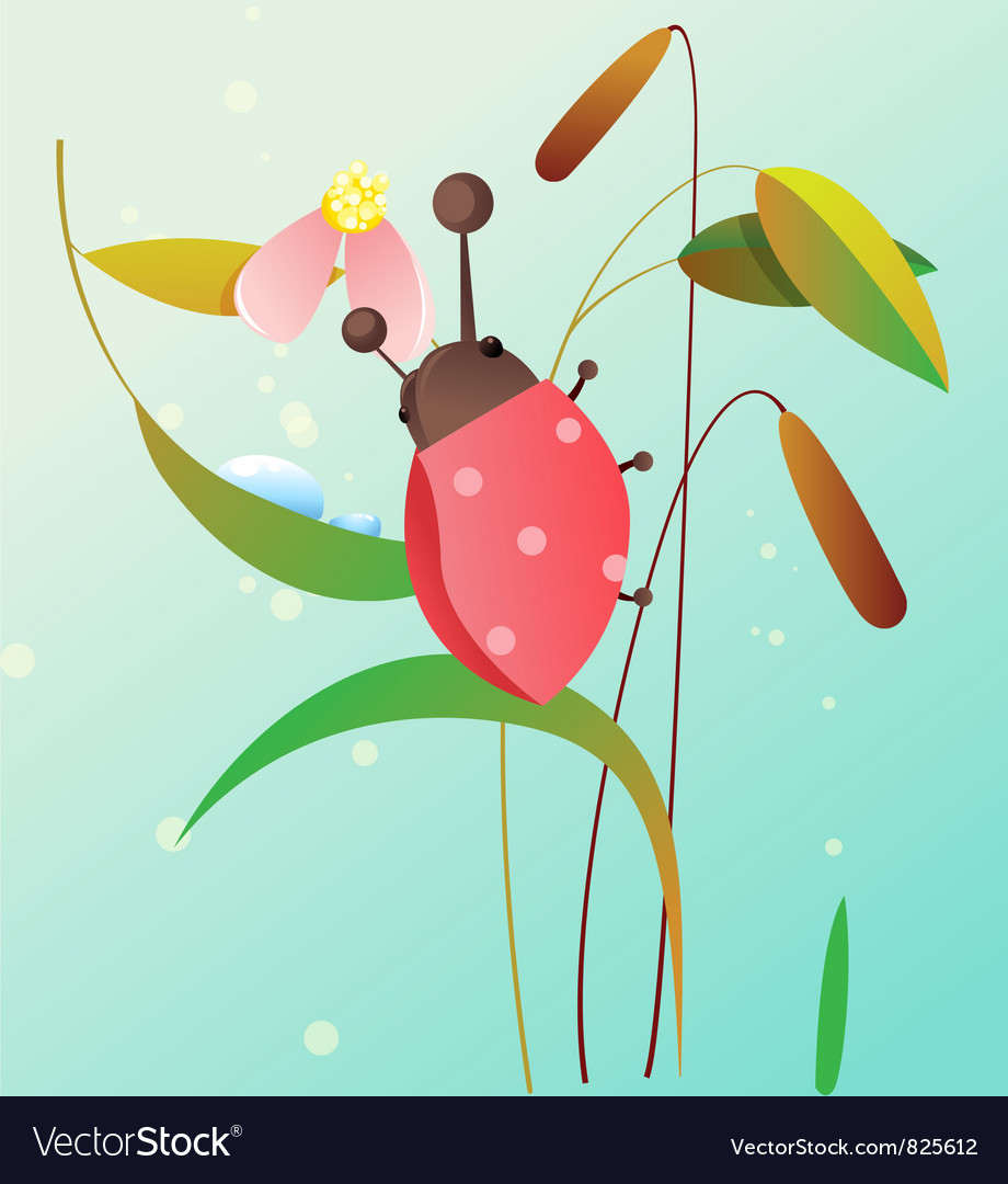Ladybird on a flower vector | Price: 3 Credit (USD $3)