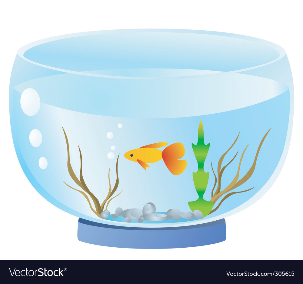 Fish bowl vector | Price: 1 Credit (USD $1)