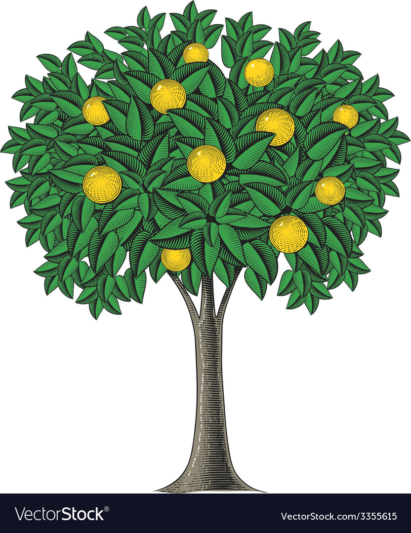Fruit tree in engraving style vector | Price: 1 Credit (USD $1)