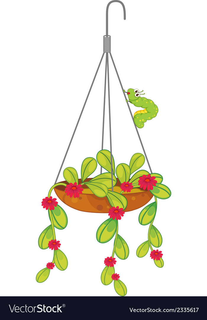 A hanging flowering plant vector | Price: 1 Credit (USD $1)