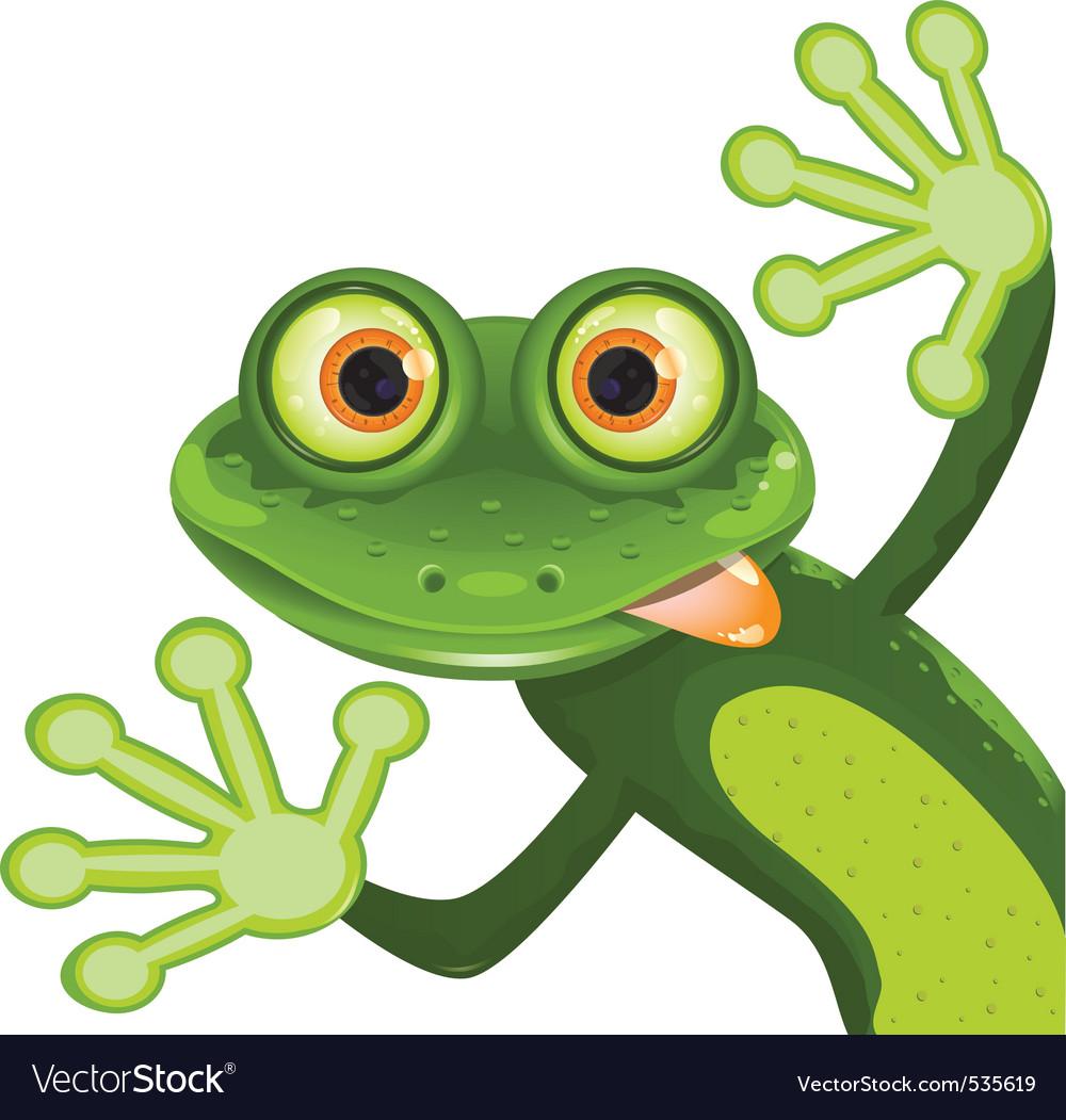 Frog vector | Price: 3 Credit (USD $3)