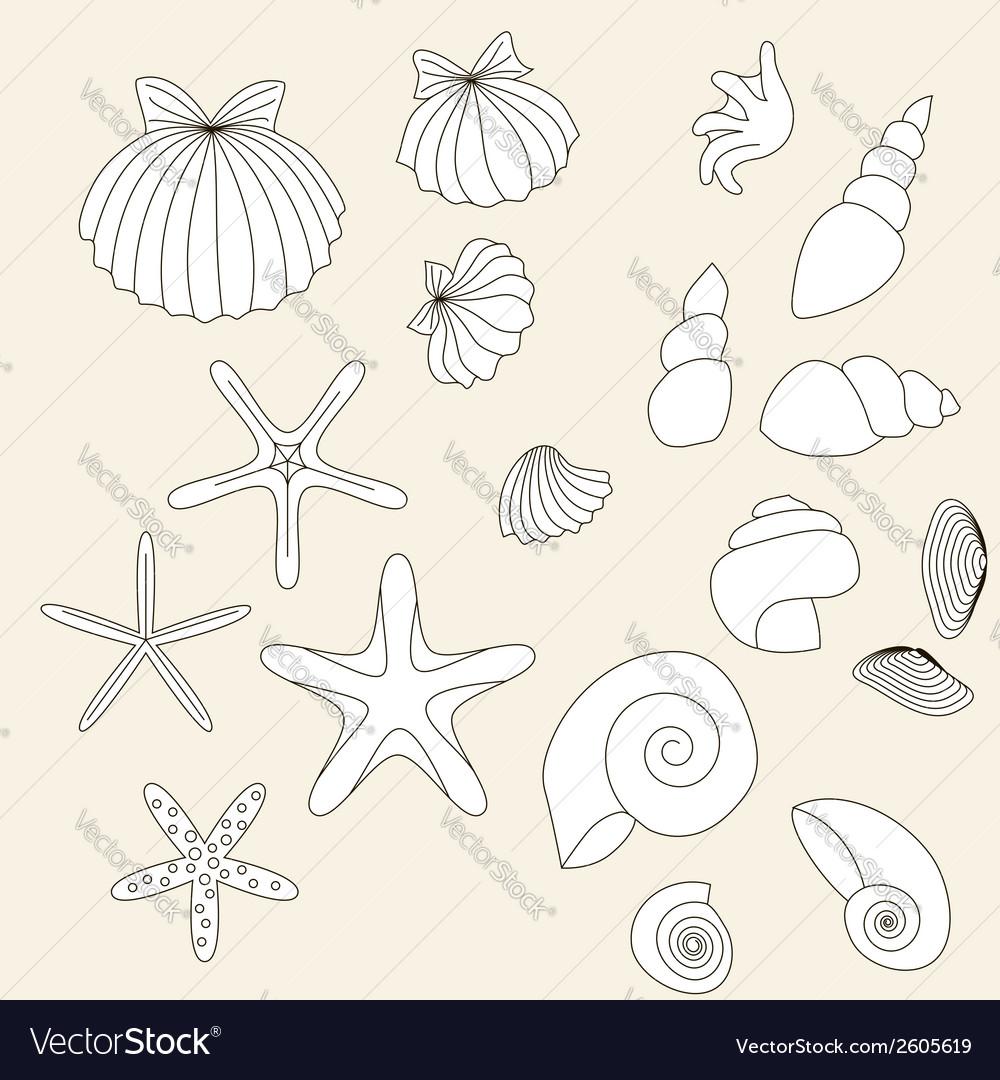 Shells vector | Price: 1 Credit (USD $1)