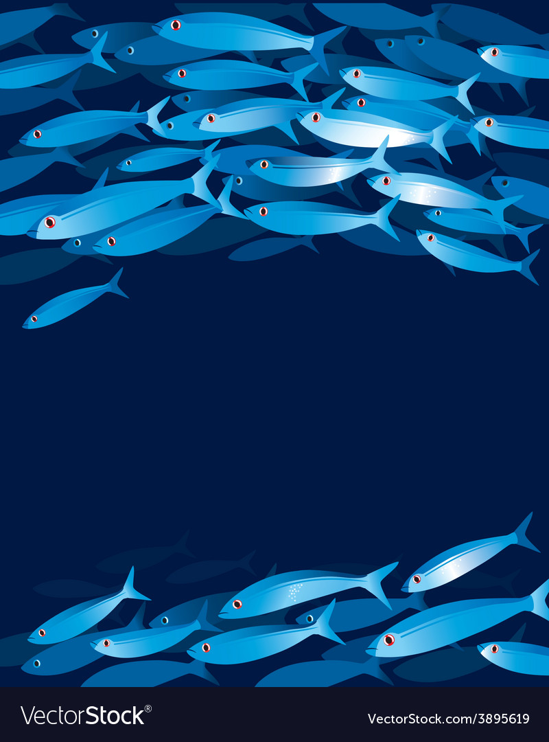 Shoal of fishes vector | Price: 1 Credit (USD $1)