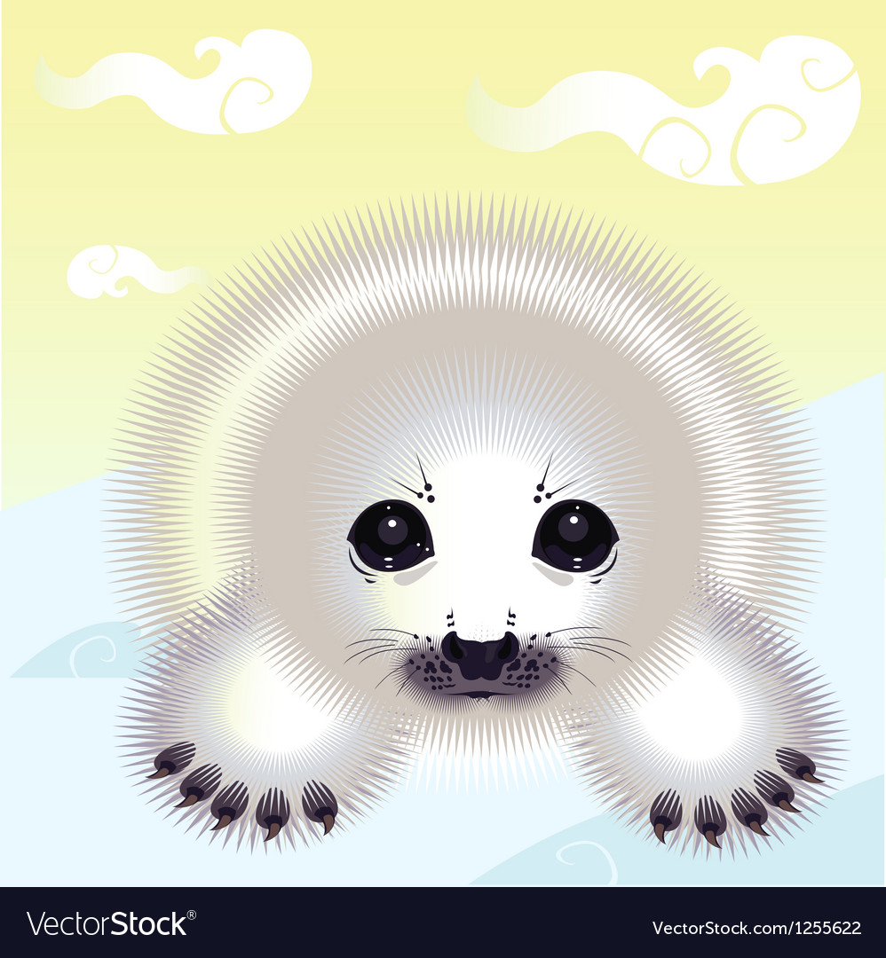 Snow seal vector | Price: 1 Credit (USD $1)