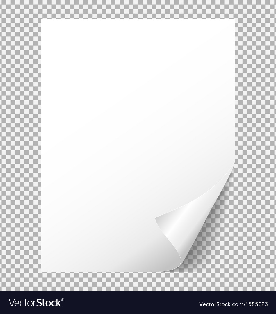 Sheet of white paper with a bent corner vector | Price: 1 Credit (USD $1)