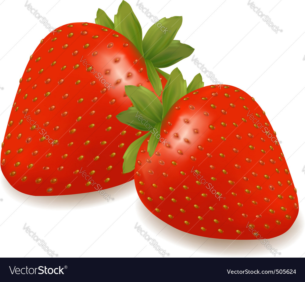 Group of strawberry vector | Price: 3 Credit (USD $3)