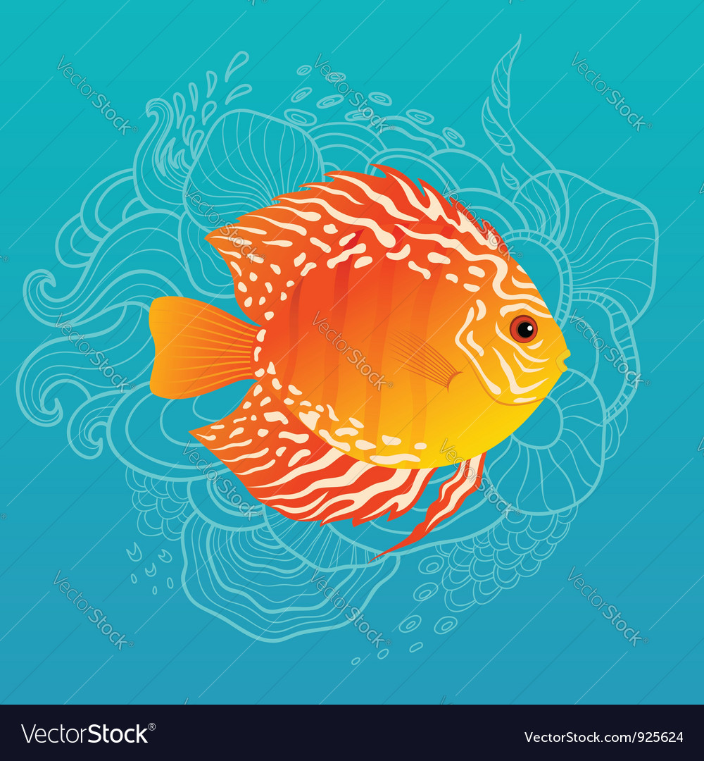 Sunny fish vector | Price: 3 Credit (USD $3)