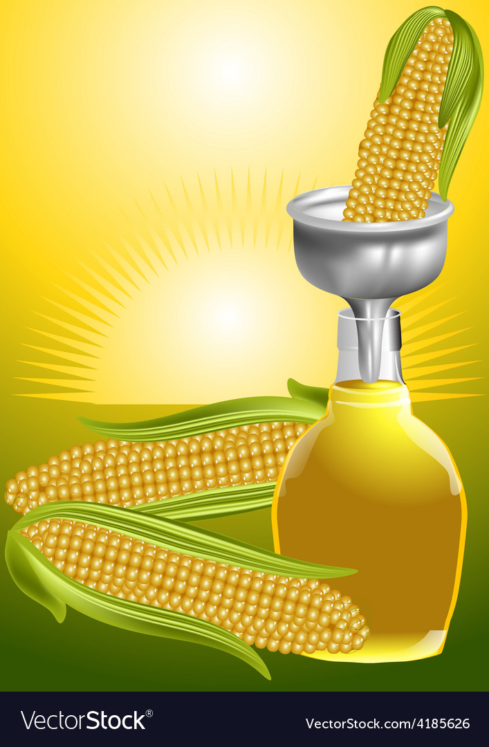 Corn syrup vector | Price: 1 Credit (USD $1)
