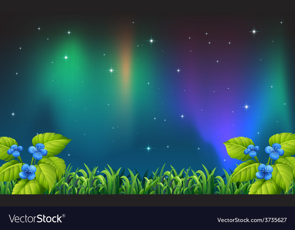 Night scene vector | Price: 1 Credit (USD $1)