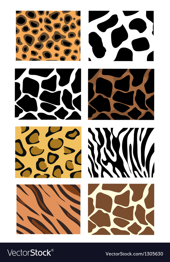 Animal print sets vector | Price: 1 Credit (USD $1)