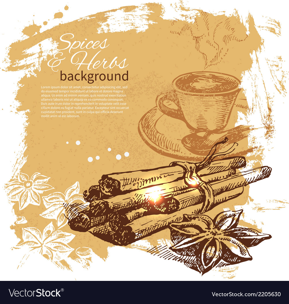Vintage background with hand drawn sketch vector | Price: 1 Credit (USD $1)