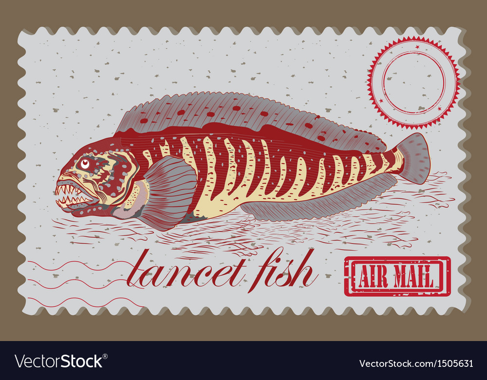 Lancet fish vector | Price: 3 Credit (USD $3)