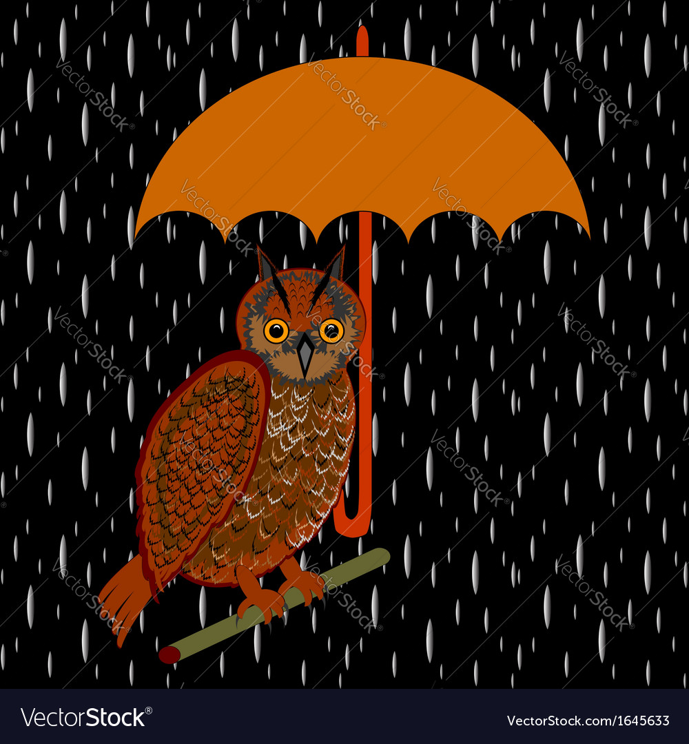 An owl with umbrella in the rain vector | Price: 1 Credit (USD $1)