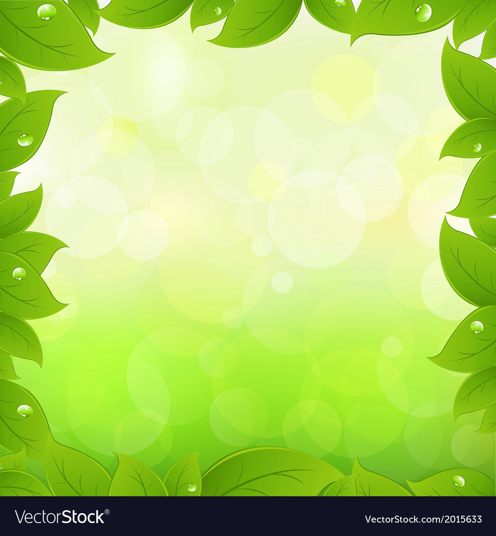 Spring leaves vector | Price: 1 Credit (USD $1)