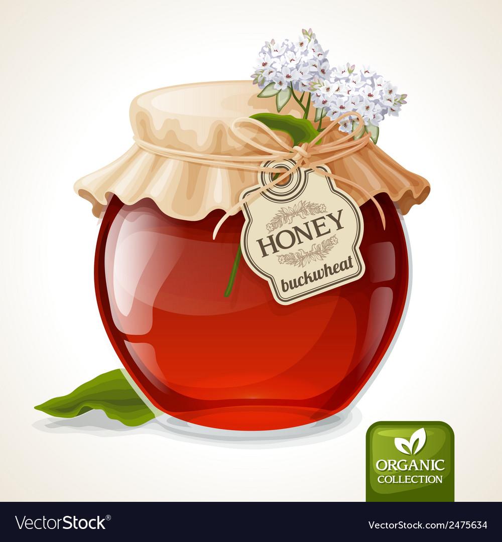 Buckwheat honey jar vector | Price: 1 Credit (USD $1)