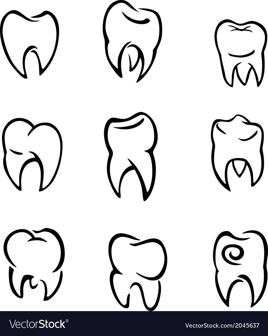 Set of teeth vector | Price: 1 Credit (USD $1)