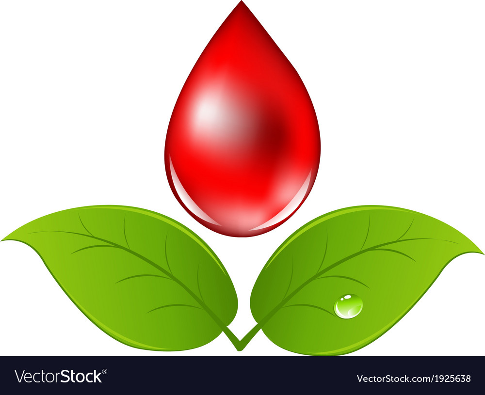 Blood drop with leafs vector | Price: 1 Credit (USD $1)