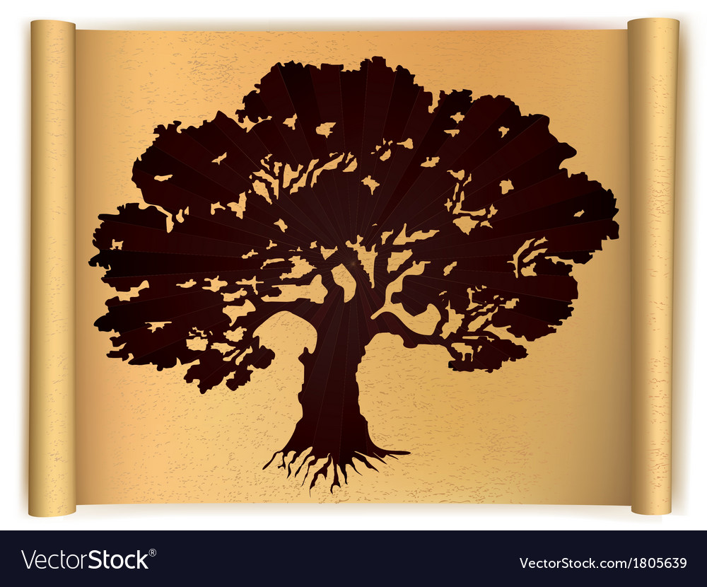 Tree on old scroll paper vector | Price: 1 Credit (USD $1)