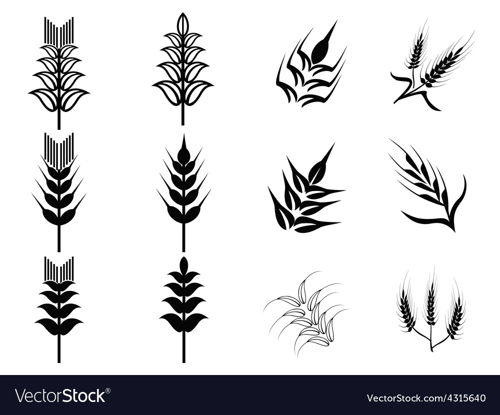Black wheat icons set vector | Price: 1 Credit (USD $1)